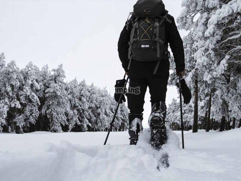 Conociendo parajes con raquetas de nieve