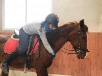 Mucho amor a nuestros caballos