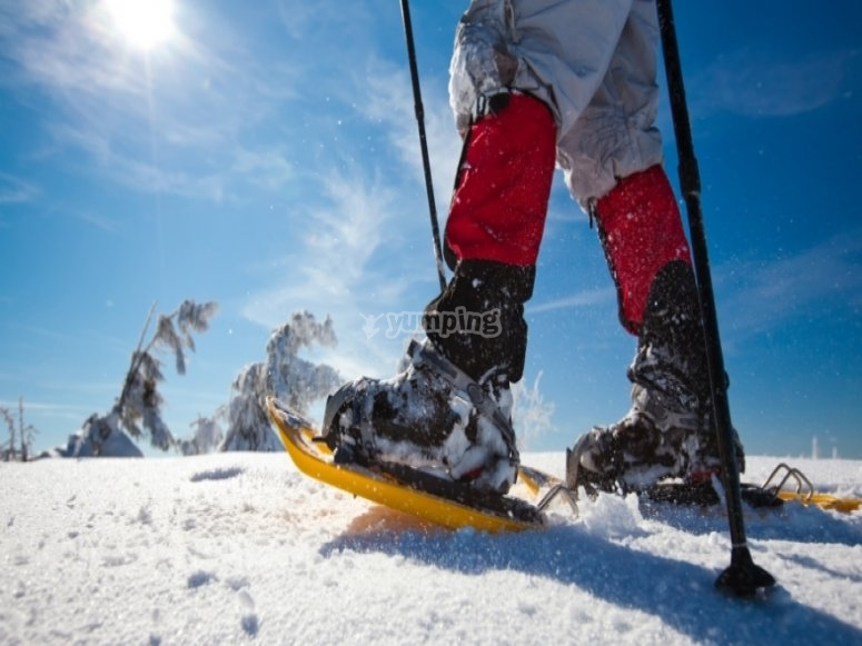 Paseo en raquetas de nieve en Maadrid