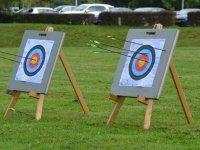 Arrows stuck in the target