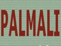 Palmalí