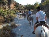 Excursiones a caballo guiadas