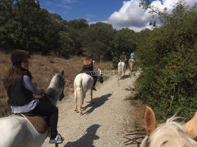 Carrying out a horseback route