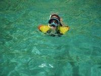 在清澈的海水中潜水