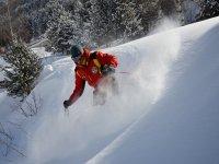 Canro esquiador