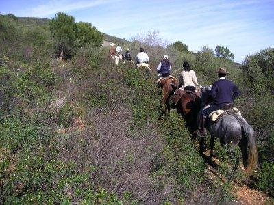 Madrid Multiaventura Rutas a caballo