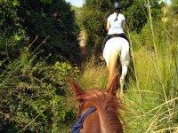 Percorso a cavallo