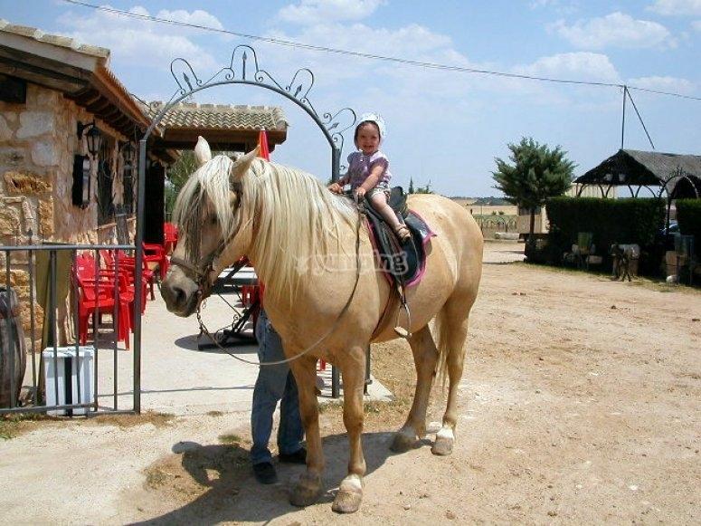 caballos para niños