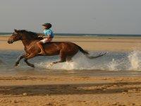 galopando en la playa