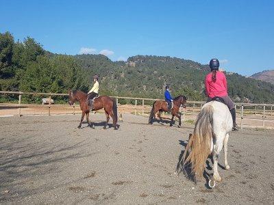 Centro Hípico Rueda Clases de Equitación
