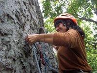 天然攀岩者