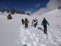 Avanzando por la nieve con raquetas en los pies