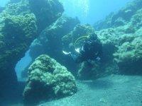 水下岩石水下动物之间