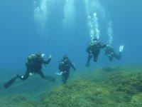 色彩鲜艳的组潜水员耶罗岛