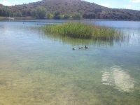 Buceo en Castilla-La Mancha