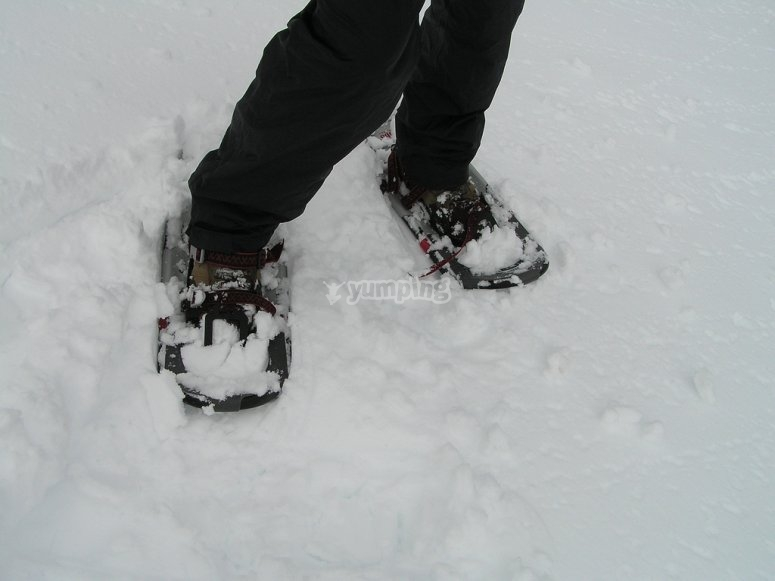 Trying the snowshoeings