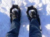Alt Pirineu雪地行走4小时