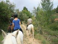 Rutas a caballo por la zona de Valencia