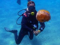 Medusa bajo el agua