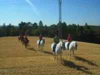 Rutas a caballo de media jornada