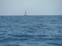 Viajando en barco de vela