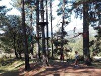 Circuitos entre arboles en Sopuerta