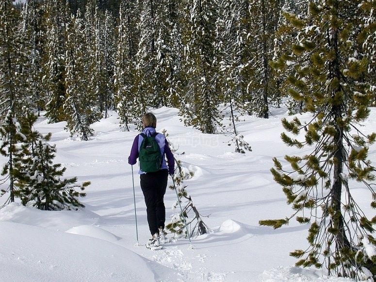 Raquetas de nieve por la Sierra