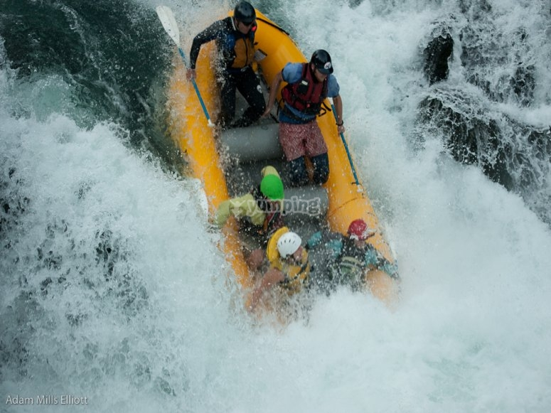 Salmon River - Adam Mills Eliott