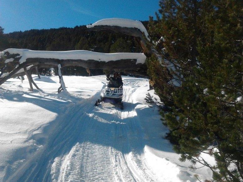 Control bajo la nieve