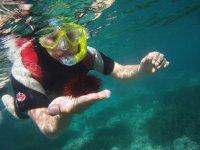 Tocando un erizo marino