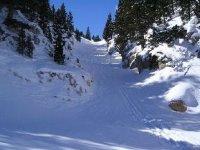 Sube a una tabla de snow y lánzate montaña abajo
