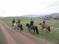 Excursión a caballo en Toledo