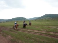 Excursiones guiadas a caballo