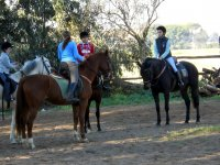 Descanso en clase de equitacion