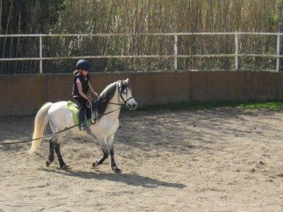 Cursillo Intensivo de equitación 30 h Barcelona