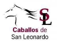 Caballos de San Leonardo