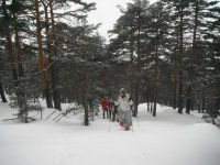 Group of snowshoes of Luyaventuras