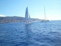 Salidas desde el sur de Fuerteventura