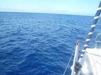 Recorremos la costa de Fuerteventura