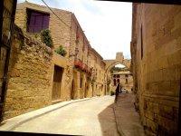 穿过拉里奥哈的传统街道