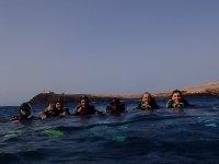 Divers in Pozo Izquierdo