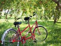 tandem bike  en el campo