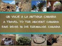 Visitas audioguiadas a yacimientos arqueológicos