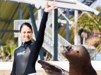 Entrenadora con leon marino