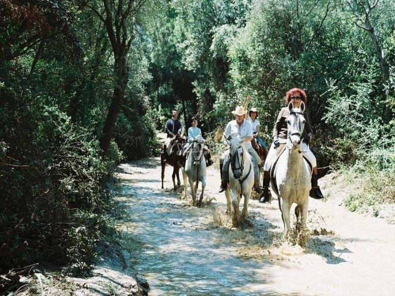 1小时骑马之旅-多纳纳(Donana)马之旅