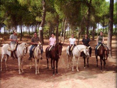 1 ora Equitazione nell'ambiente Doñana