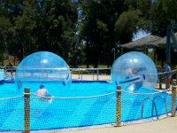Bolas de zorbing en la piscina