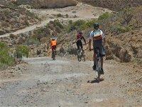 Nuestros paisajes naturales en Arico