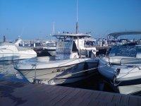 巴伊亚巡航船的Hydra-体育渔民捕鱼