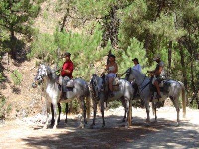 Ruta a caballo en el Valle de Lecrín,2h